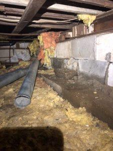 vancouver janzen home inspections basement inspection